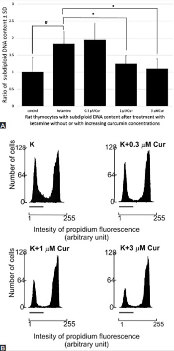Modulatory effect of curcumin on ketamine-induced toxicity in rat thymocytes: Involvement of reactive oxygen species (ROS) and the phosphoinositide 3-kinase (PI3K)/protein kinase B (Akt) pathway