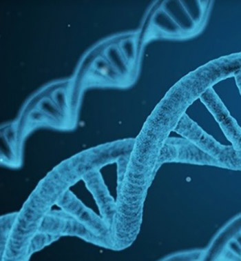 Clinical Significance of the KRAS Mutation