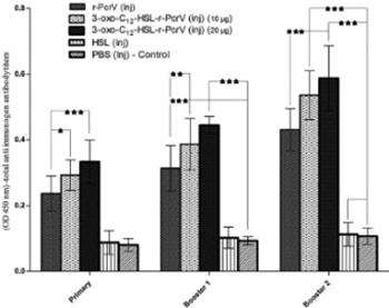 Immunization with 3-oxododecanoyl-L-homoserine lactone-r-PcrV conjugate enhances survival of mice against lethal burn infections caused by Pseudomonas aeruginosa