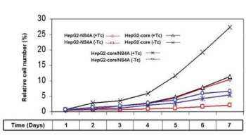 Inhibition of Hepatitis C virus (HCV) Core protein- induced Cell Growth by Non-structural Protein 4A (NS4A) is Mediated by Mitochondrial Dysregulation