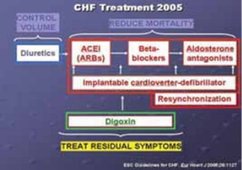 Echocardiographic Monitoring of Patients with Heart Failure