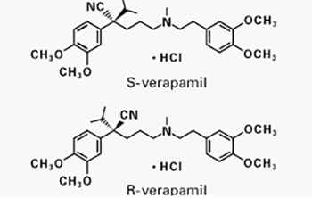 Using Verapamil as Protective Factor in Renal Ischemia Reperfusion Injury During Anatrophic Nephrolithotomy