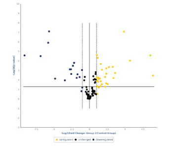 A preliminary study of microRNA expression in different types of primary melanoma