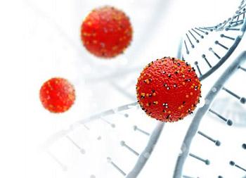 HPV infection screening using surface plasmon resonance in women from Kunming (southwest China)