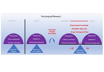 In vitro toxicity model: Upgrades to bridge the gap between preclinical and clinical research