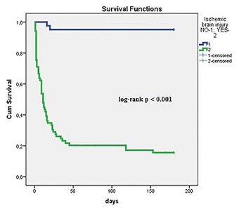 Neurological outcome in patients after successful resuscitation in out-of-hospital settings