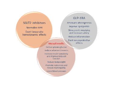 Pharmacogenetics of new classes of antidiabetic drugs