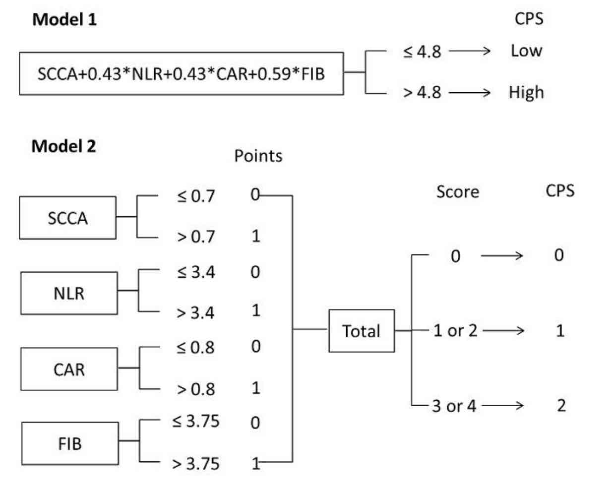 Development and validation a novel preoperative comprehensive prognostic score based on inflammatory and nutritional score, coagulation indicator and tumor marker in esophageal squamous cell carcinoma